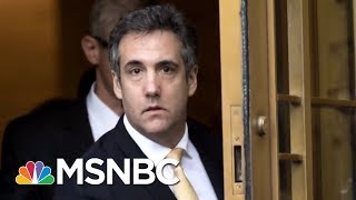 Mueller Filing: Cohen Disclosed Discrete Russia-Related Matters Central To Probe   MTP Daily   MSNBC