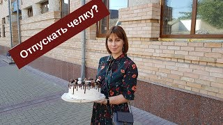 Торт в 5 кг, Варенье, Кнопка, Отпускать Челку?