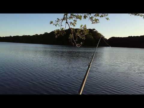 Blydenburgh Bass Fishing Long Island NY (Carp In Blydenburgh?)