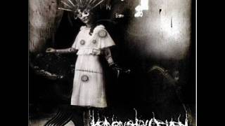 Heaven Shall Burn - Numbing the Pain