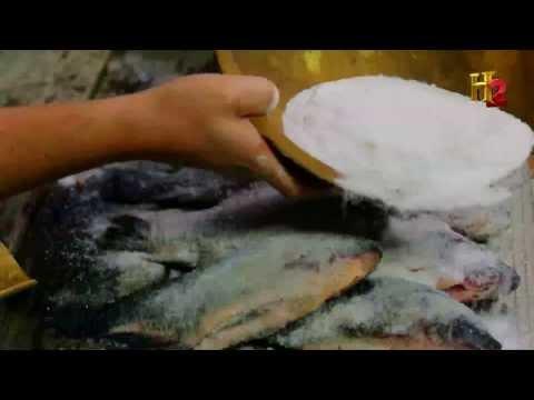 Salt: A Brief Big History