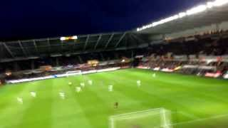 Crystal Palace vs Swansea - Glenn Murray Pen + We love you chant!