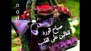 شيله صباح الخيرمن قلب صباحه|اداء: :أمين ثابت: :