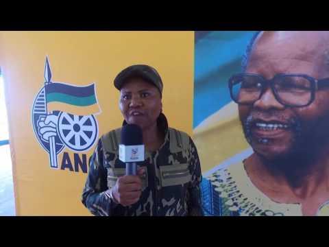 On Supporting Palestine, Lindiwe Zulu