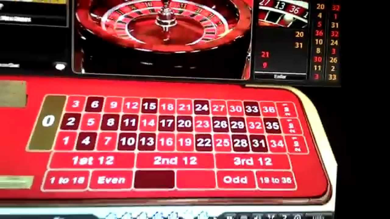 Bets life savings on roulette betting on a horse