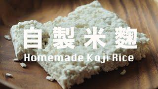 【Eng Sub】自製米麴  少少米麴變一大盤   發酵萬用調味料   How to make Koji Rice