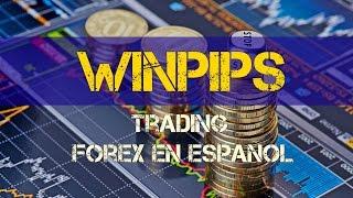 Winpips - Trading forex en español | Trailer del canal