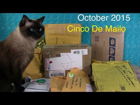 October Cinco De Mailo Fan Mail Plus Paul Wears MH Tattoos | PSToyReviews