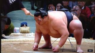 The first of the four yokozuna to see action on Day 1 is Kisenosato...