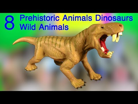Learn about Wild Animals | Dinosaurs | Mammoths | Prehistoric mammals | Marine Animals | Zoo animals