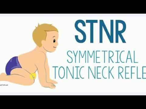 Pediatrics, NEONATAL REFLEXES
