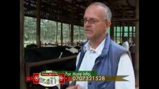 Baraka Farm - Calf Rearing 2