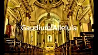 Gaudium Alleluia Instrumental Karaoke