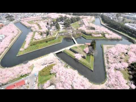 Japan Trip: Fort Goryokaku star shaped citadel, cherry blossom, Hakodate, Hokkaido52