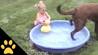 Dog Ruins Little Girls Rubber Duck Play Time