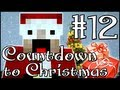 Minecraft: Countdown to Christmas: 12th December - House Showcase & Presents