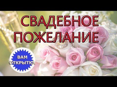 Добрые и пожелания для молодожёнов. Оригинальное видео поздравление с Днём свадьбы.