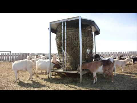 Hayboss Livestock Bale Feeder