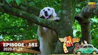 Hathe Kalliya   Episode 181   2020- 01- 28 Thumbnail