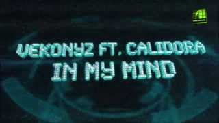 Klippremier Vekonyz ft. Calidora - In My Mind