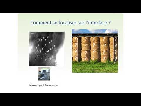 2017 Bordeaux Conference du Millesime - Clement Chambaud