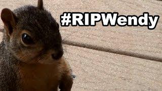 Repeat youtube video #RIPWendy