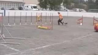 Cavalier Neleh In Oulu / Track B