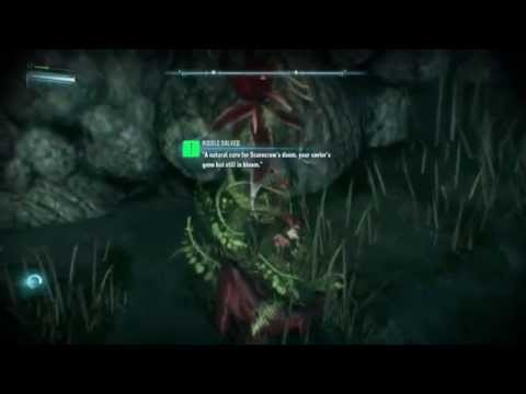 Batman: Arkham Knight MIAGANI ISLAND Riddle #4 - Poison Ivy!