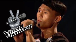 Talking To The Moon Bruno Mars Dehua Hu Cover The Voice Of Germany 2016 Audition