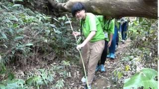 毛克利愛心旅行 TW1519S 新竹文山