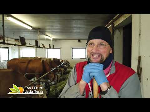 Clemenz e il suo maso: in Val Gardena tra natura e agricoltura