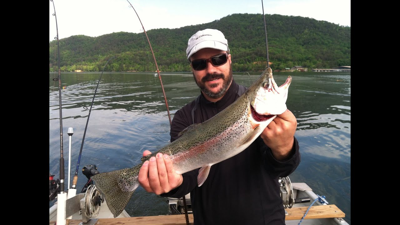 Fishing dale hollow lake for big smallmouth and rainbow for Dale hollow lake fishing report
