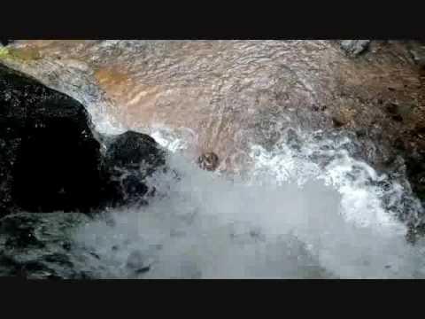 Adyar waterfalls, mangalore.