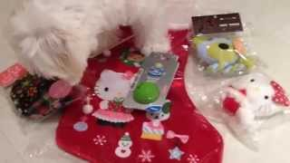 Paimei Opens Early Xmas Gifts 2014