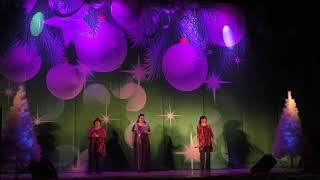 Новогодний праздничный концерт. Камышин ДК Текстильщик. 29 декабря 2019 г. 6 часть.