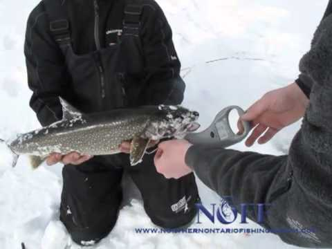Northern Ontario Fishing Forum ep1
