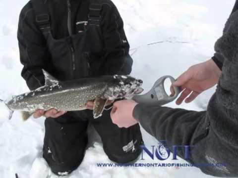 Northern Ontario Fishing Forum Ep1