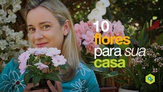 10 Flores Ótimas Para Sua Casa