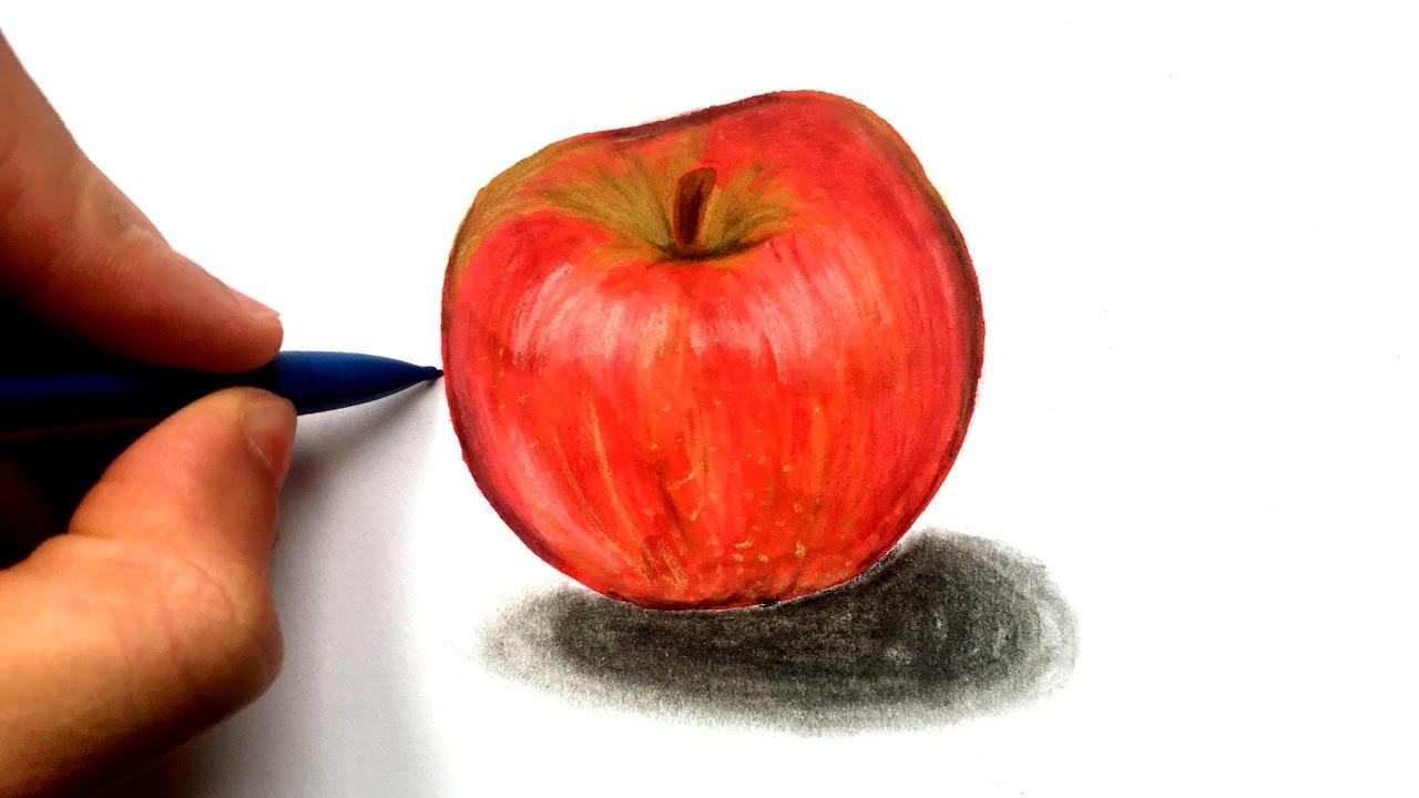 Comment dessiner une pomme r aliste youtube - Dessin pomme apple ...
