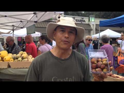 Crystal Organic Farm: Figs at Morningside Farmers Market