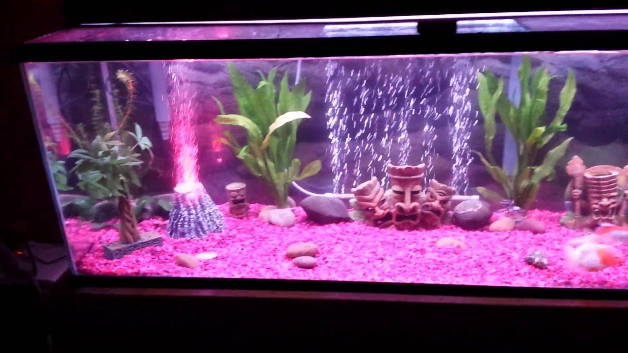 60 gallon goldfish aquarium light show youtube for Pink fish tank
