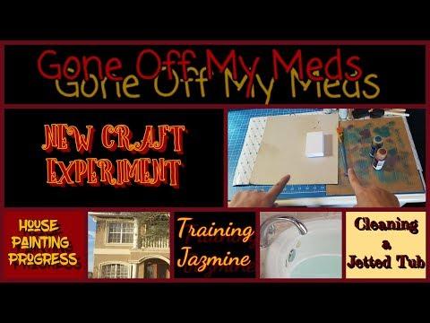 New Craft Idea ~ Training Jaz ~ Cleaning a Jetted Tub ~ House Painting Progress ~ DiamondTube #124