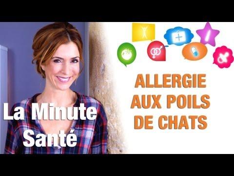 Comment Se Manifeste Une Allergie Aux Poils De Chat ?