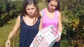 Bre & Val Apple Picking Alstede Farm Chester NJ 2014