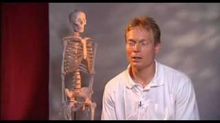 Prophylaxe gegen Müdigkeit mit dem Oleg Lohnes  Revitaler® (3/6)