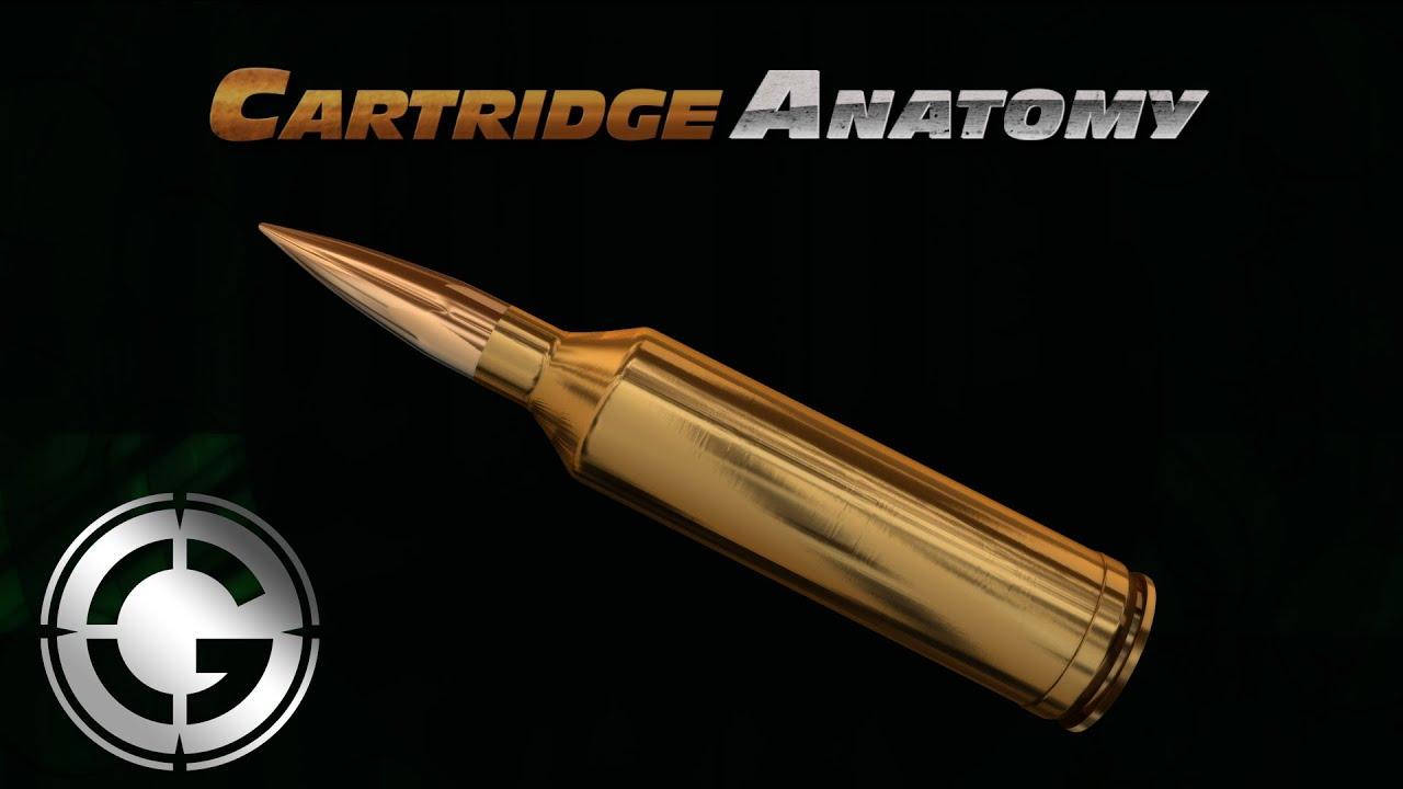Rifle Cartridge Anatomy - YouTube
