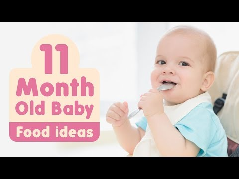 Food Ideas For 11 Month Old Baby