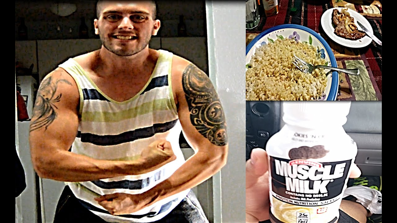 Download IIFYM Full Day of Eating Vlog1, Physique Update, Bulking!