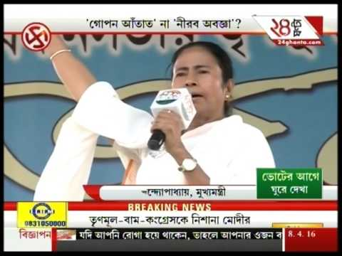 Mamata Banerjee's election campaign before poll 2016