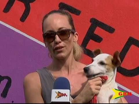 Animal Cruelty In Grenada
